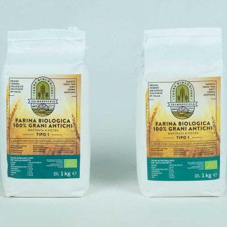 Farina tipo 1 Bio mix grani antichi