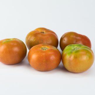 Pomodori da insalata o insalatari